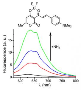 Рис. 8. Рост интенсивности флуоресценции диоксаборина при прибавлении аммиака к его водно-метанольному раствору.